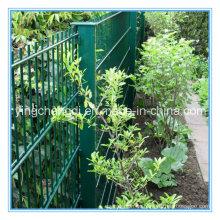 PVC-überzogener Gartenzaun / doppelter Maschendraht / Maschendrahtzaun (Hersteller)