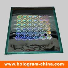 2D и 3D лазерной безопасности голографической Мастер