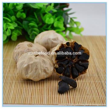 Black allium sativum Extract