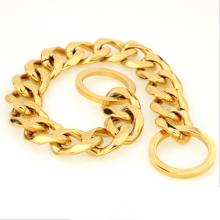 2018 collier de chien en acier titanique fort de chien de chaîne de serpent plaqué or