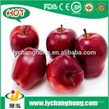 [HOT] huaniu fresh apple /sweet huaniu apple