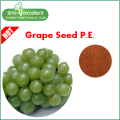 100% zuiver echt Grape Seed extract