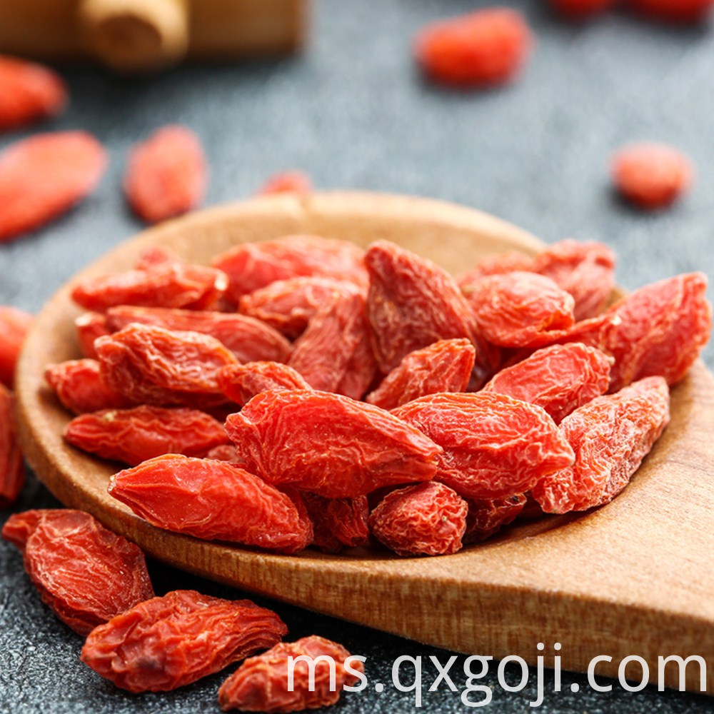 AD Drying Wolfberries Fruit