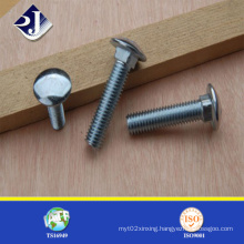 Stainless Steel DIN603 Coach Bolt for Track