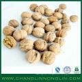 2014 changlin alibaba fornecedor de ouro secado milho orgânico de milho