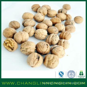 2014 changlin alibaba golden supplier dried organic corn kernel