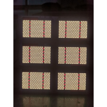 LM301B 600W Indoor Grow Lights pertumbuhan hidroponik