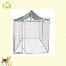 Chenil de cages pour animaux de compagnie robuste et durable en gros