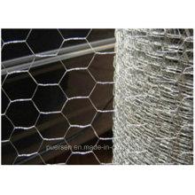 Hexagonal Wire Mesh/Anping Hexagonal Mesh