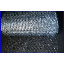 Filetage en fil hexagonal à galets galvanisés à chaud ou chaud