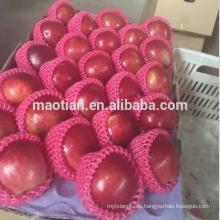 Köstliche Highland Huaniu Apple