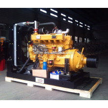 Ricardo Diesel Engine with Clutch 2200rpm 115kw