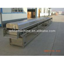 Automatic vegetable&fruit sterilization machine/jujube sterilization machine