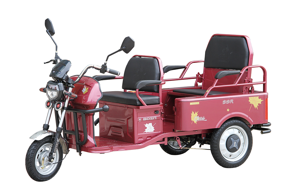electric rickshaw for sale