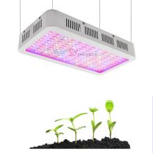 Éclairage hydroponique à spectre complet LED élèvent la lumière