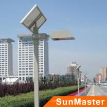 Солнечная светодиодные сад свет (SGL01)