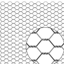 Treillis métallique de poulet hexagonal galvanisé