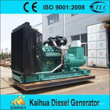 fabricante diesel del precio bajo del fabricante de China 800kw wudong: