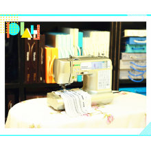 Wonyo Durable Best Selling Domestic Home Small Embroidery Machine