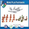 Made In Taiwan Standard Non-Standard Custom OEM Customize Rivet