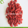 Factory Supply Fruits Anti-Age Frische Goji-Beere