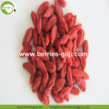 Factory Supply Frukter Anti Ålder Fresh Goji Berry
