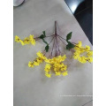 The Beauty Flower with Silk Artificial Decoration