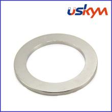 Anneau NdFeB Magnets (R-012)