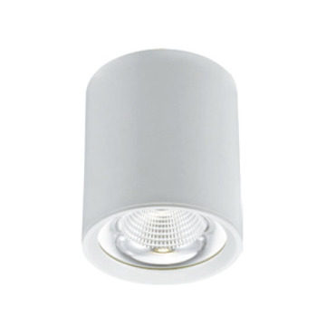 Cuisine LED Downlight 30W