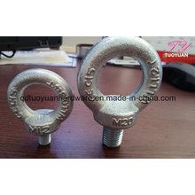 Manufacture of DIN582 Eye Nut