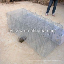 Cages d'élevage de visons