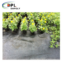 Competitive Price Good Quality Greenhouse Farm Ground Weed Control Fabric Mat