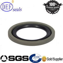 Mini PTFE Spgo Ring/Seal Ring with High Quality for Excavator Seals