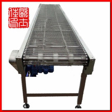 stainless steel chain conveyor belt made in china