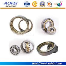 China Rolamento de rolo cilíndrico NN3020K / W33 da fileira dobro de alta qualidade do fabricante do rolamento