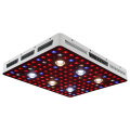 3000W Plant Grow Lights Huerto 2020