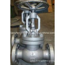 Vanne à bille en acier inoxydable de 300 lb / 600 lb avec extrémité de bride RF