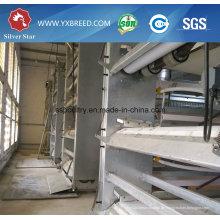 Huhn Bauernhof Ausrüstung H Typ Broiler Geflügel Käfig