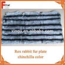 Rex plaque de lapin teints chinchilla couleur six bandes
