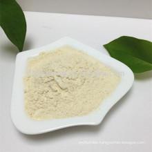 top quality Halal horseradish powder in bulk