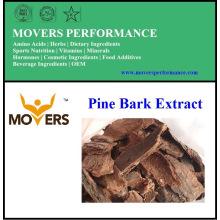 Hochwertige natürliche Versorgung Kiefer Rinde Extrakt