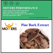 High Quality Natural Supply Pine Bark Extract