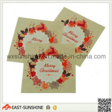 Fashion Cleaning Cloth for Glasses (DH-MC0459)