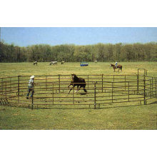 PVC Coated Fencing Livestock