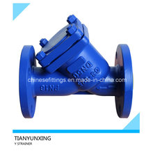 Dn50 DIN Cast Steel Flanged Y Strainer with Epoxy Coating