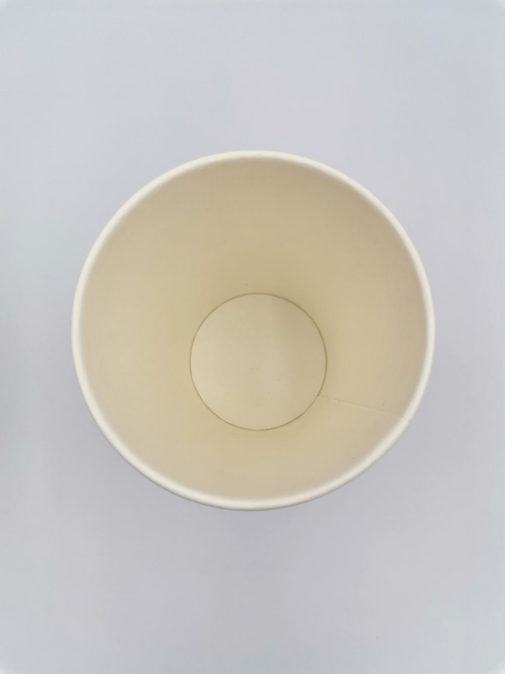 Biodegradable Disposable Paper Cup