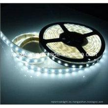 DC24V 5630 70LEDs / M Tira de LED de corriente constante