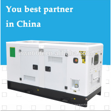 prix bon marché du générateur électrique Yangdong 12kW
