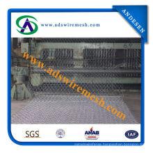 (low carbon steel wire) Gabion Mesh (ADS-GM-11)
