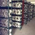 Metal cogumelo crescendo rack para sala fria (CJ16013200A5E)